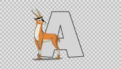 Letter A and Antelope (foreground) Stock Footage
