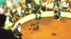 Out Of Focus Cockfight Public Life And Death Match Stock Footage
