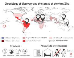Infographics virus Zika Stock Illustration