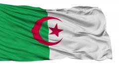 Isolated Waving National Flag of Algeria - stock footage