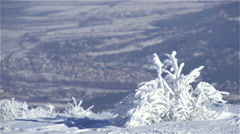 frosted tree high in the mountains in the background Valley - stock footage