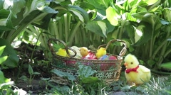 Chicken toy moves near the basket with colored eggs placed in the green grass Stock Footage
