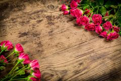 Bunch of pink roses on wood background - stock photo