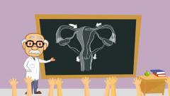 Vagina - classroom  - cartoon teacher Stock Footage