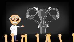 Vagina - projector  - cartoon teacher Stock Footage