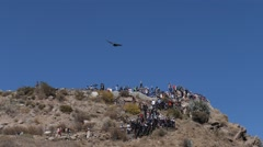 Condor flying under blue sky Stock Footage
