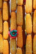 Beautiful flower made from corncob, Thai handcraft product. Stock Photos
