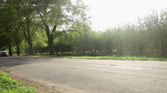 Luxury car driving slowly by beautiful sunlit green garden, exhaust fumes in air Stock Footage