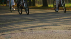 People riding bicycles in the park on sunny summer day, healthy outdoor activity Stock Footage