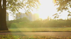 Beautiful magic hour in the park on city outskirts, many active people cycling Stock Footage