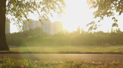 Fantastic magic hour in green summer park on city outskirts, many people cycling Stock Footage