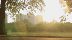 Romantic young woman walking in sun rays, looking for inspiration in the park Stock Footage