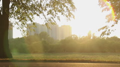 Energetic young man jogging in city park, sportsman living active healthy life Stock Footage