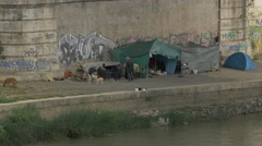 Homeless men and their dogs and tents under Ponte Giuseppe Mazzini in Rome Stock Footage