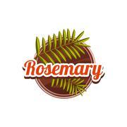 Rosemary Spice. Vector Illustration - stock illustration