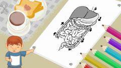Stock Video Footage of Digestion - Breakfast Background - boy