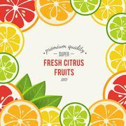 Grapefruit, lime, lemon and orange with mint leaves Stock Illustration