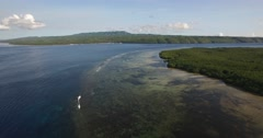 4K AERIAL PAN SHOT OF MANGROVE FOREST Stock Footage