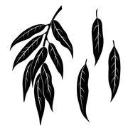 Willow Leaves, Pictogram Set - stock illustration