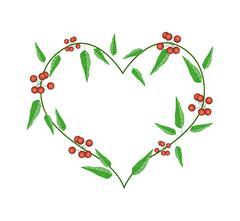 Stock Illustration of Evergreen Leaves in A Heart Shape Frame