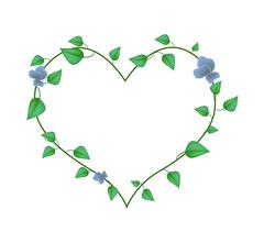Vine Leaves with Blossoms in A Beautiful Heart Shape Stock Illustration