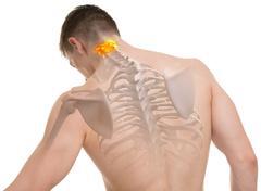 Stock Photo of Atlas C1, C2 Spine Anatomy isolated on white