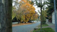 Slowmotion view on the road from behind a tree whitch lined street with houses a Stock Footage