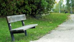 Slowmotion wooden bench in park Stock Footage