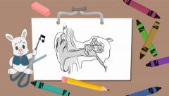 Ears - drawing board - rabbit Stock Footage