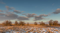 Moving clouds over the golden grasses studded snow in the desert in the winter. - stock footage
