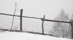 Wind blow snow on the ground at the edge of the pasture enclosed by a wooden - stock footage