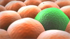 Division of cancer cells Stock Footage