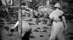 1934: Women harvesting garden during depression era food shortage. - stock footage
