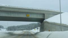 Driving under bridge in snowstorm. Alberta, Canada. Stock Footage