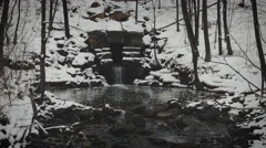 4k - small pond in winter Stock Footage
