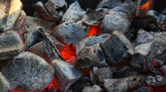 skewer with meat placed on the coals - stock footage