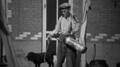1935: Man spraying pesticide herbicide chemicals on rose bushes. Stock Footage