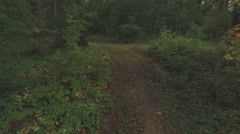 Aerial of a young woman walking through a forest, tracking shot Stock Footage