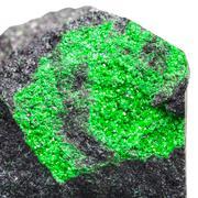 uvarovite druse on stone isolated on white - stock photo