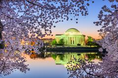Jefferson Memorial in Spring - stock photo