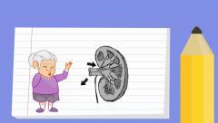 Kidney - Notebook  Cartoon - grandma Stock Footage