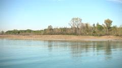 Vegetation on the coast of the Tagliamento river Stock Footage