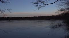 4k Frozen lake hidden nature reserve Viehmoor winter Stock Footage