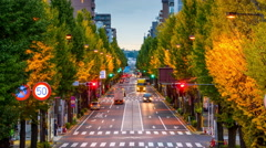 Tokyo in Early Autumn - stock footage