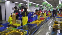 Shopping arcade on the Fish Market. Busan, South Korea Stock Footage