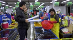 Customers buying live seafood on the Jagalchi Fish Market. Busan, South Korea Stock Footage