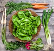 Fresh organic bio vegetables on wooden background - stock photo