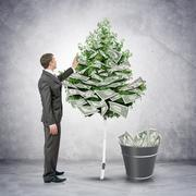 Businessman collecting money from tree - stock photo