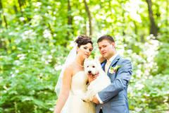 Bride and groom wedding with dog summer outdoor Stock Photos