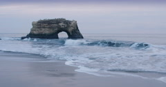 Stock Video Footage of Natural Bridges State Park, Santa Cruz